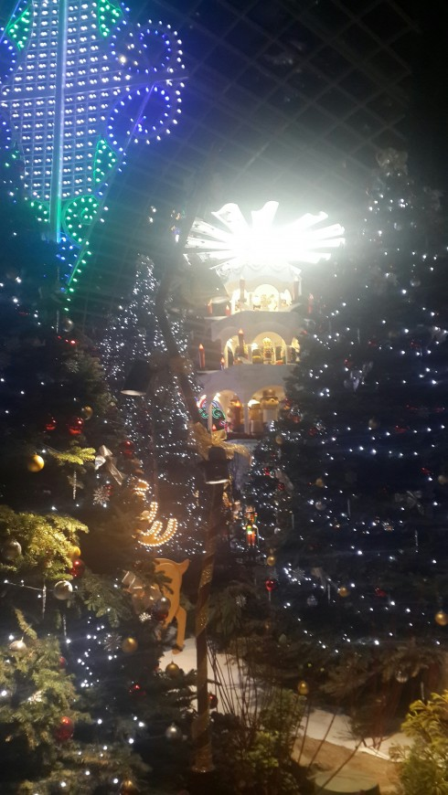 Những ánh đèn màu lấp lánh khiến không khí Noel tràn ngập