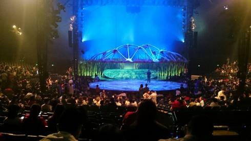 Cirque De Soleil - Totem là show trình diễn nghệ thuật tuyệt vời nhất quả đất mà tôi từng được xem