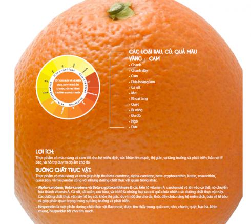 Thẩm định dinh dưỡng qua sắc màu rau củ quả cùng NSND Lê Khanh