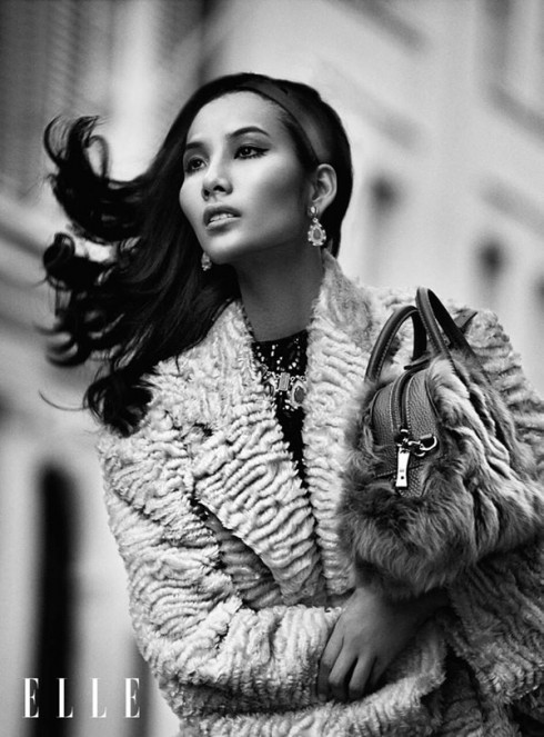 người mẫu Việt Elle9