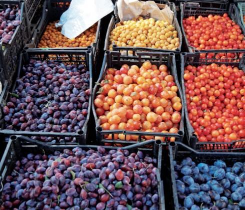 Những trái mận tươi rói tại một trong những khu chợ trái cây đông đúc ở Tbilisi.