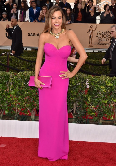 sao-mac-dep-tham-do-sag-awards-sofia-vergara-vera-wang