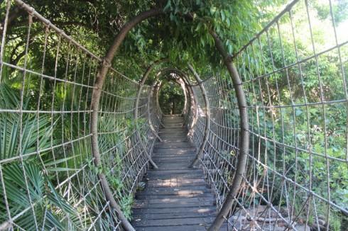 Cầu Nhện tại Sun City Resort ở Nam Phi