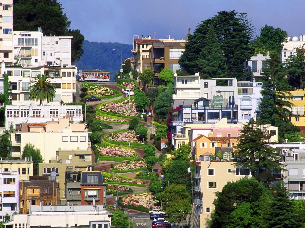 Đây chắc chắn là con đường mà bạn sẽ phải ngắm nhìn nó thật kỹ. Dân San Francisco không hề ngạ ngùng khi giới thiệu với mọi người đây là con đường uốn lượn nhất thế giới.