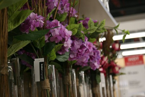 Chỉ từ 40,000đ bạn đã có thể chọn lựa những bông hoa đẹp về trang trí trong gia đình.