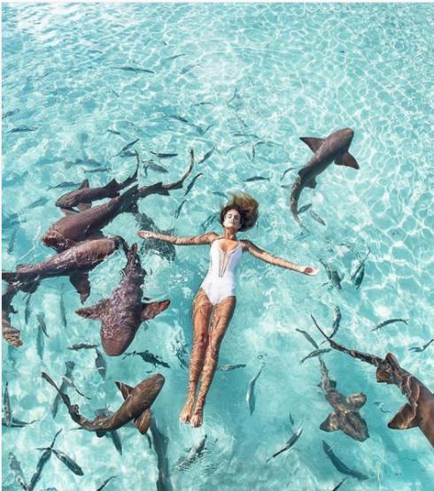 Thổi cảm hứng du lịch biển từ Instagram 3