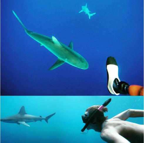 Thổi cảm hứng du lịch biển từ Instagram 1