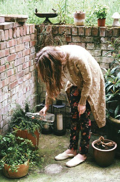 Học cách làm vườn từ A đến Z 6