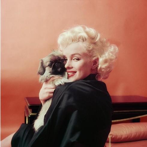 7-câu-nói-nổi-tiếng-bị-hiểu-lầm-là-của-Marilyn-Monroe-Ảnh-6