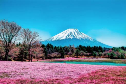 Cơ hội khám phá đất nước Nhật Bản xinh đẹp cho người tham dự cuộc thi