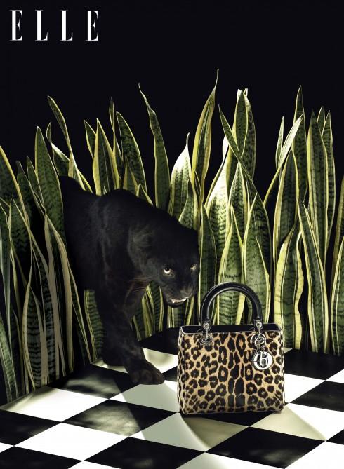 Phụ kiện thời trang túi Lady Dior