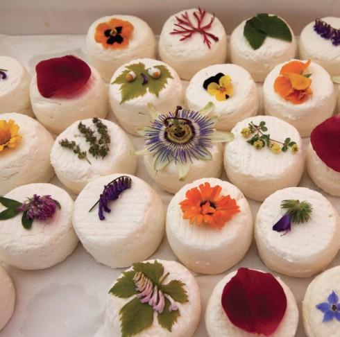 Corsica: phô mai mềm xinh xắn bày trên khay