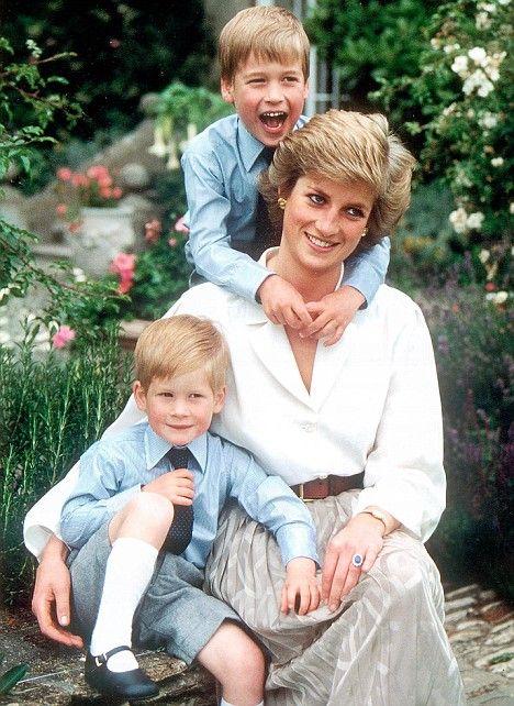Công nương Diana và 2 hoàng tử
