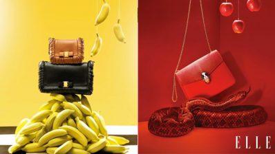 Phụ kiện thời trang và định luật hấp dẫn