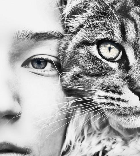 4 lợi ích của việc nuôi thú cưng