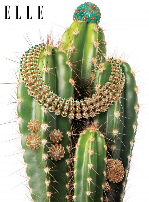 BST Cactus de Cartier