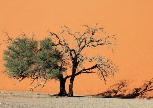 Du lich Namibia tieng goi noi hoang da 1