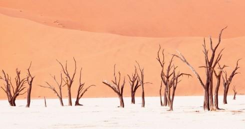 Du lich Namibia tieng goi noi hoang da 4