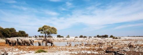 Du lich Namibia tieng goi noi hoang da 7