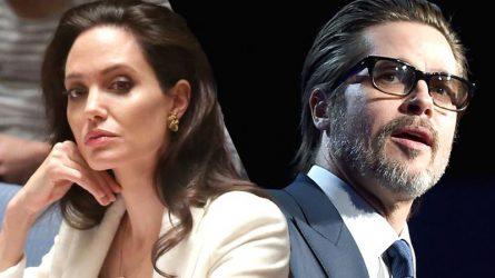 Angelina Jolie và Brad Pitt chính thức ly dị
