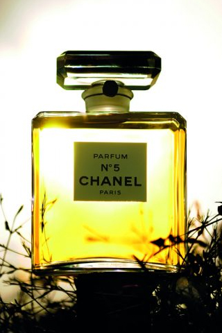 Chanel No.5 Extract - Đất trời trong chai