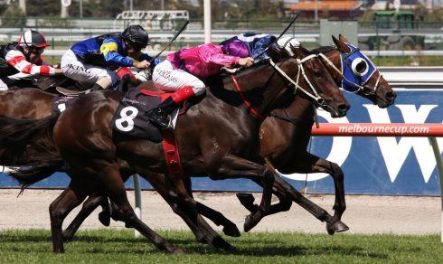 Bữa trưa mừng giải đua ngựa Melbourne Cup: 1 tháng 11