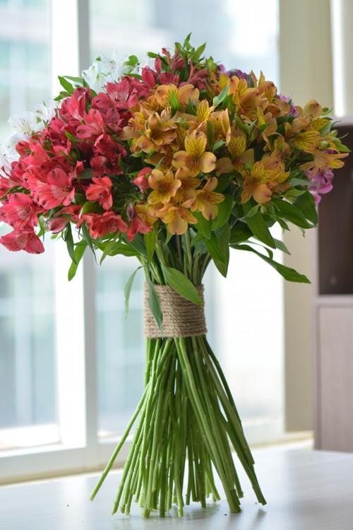 Cửa hàng hoa tươi Dalat Hasfarm cho cư dân Quận 6, TP.HCM