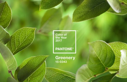 vien-mau-sac-pantone-cong-bo-color-of-the-year-2017-1