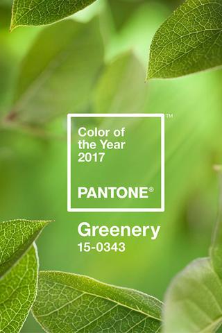 Viện màu sắc Pantone công bố Color of The Year 2017