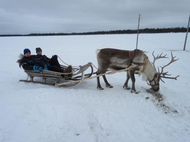 Du lịch Lapland, Phần Lan, quê hương ông già Noel - 09