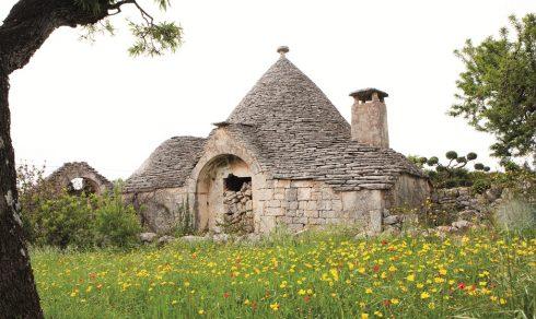 Một ngôi nhà Trullo nguyên bản bị bỏ hoang trên đồng oliu