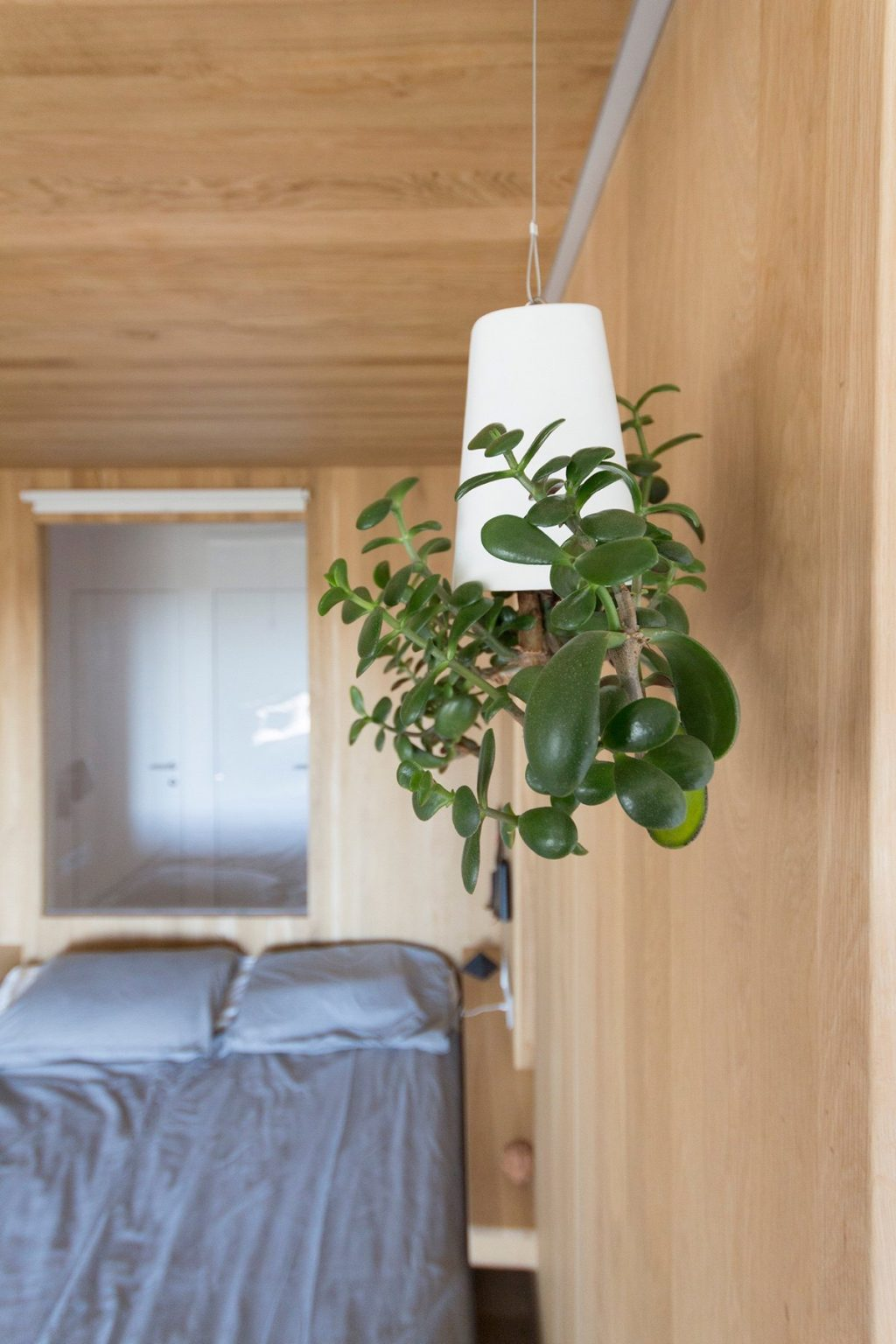 25.Bedroom-living-light-white-cone-on-wooden-wall-original-adds-character