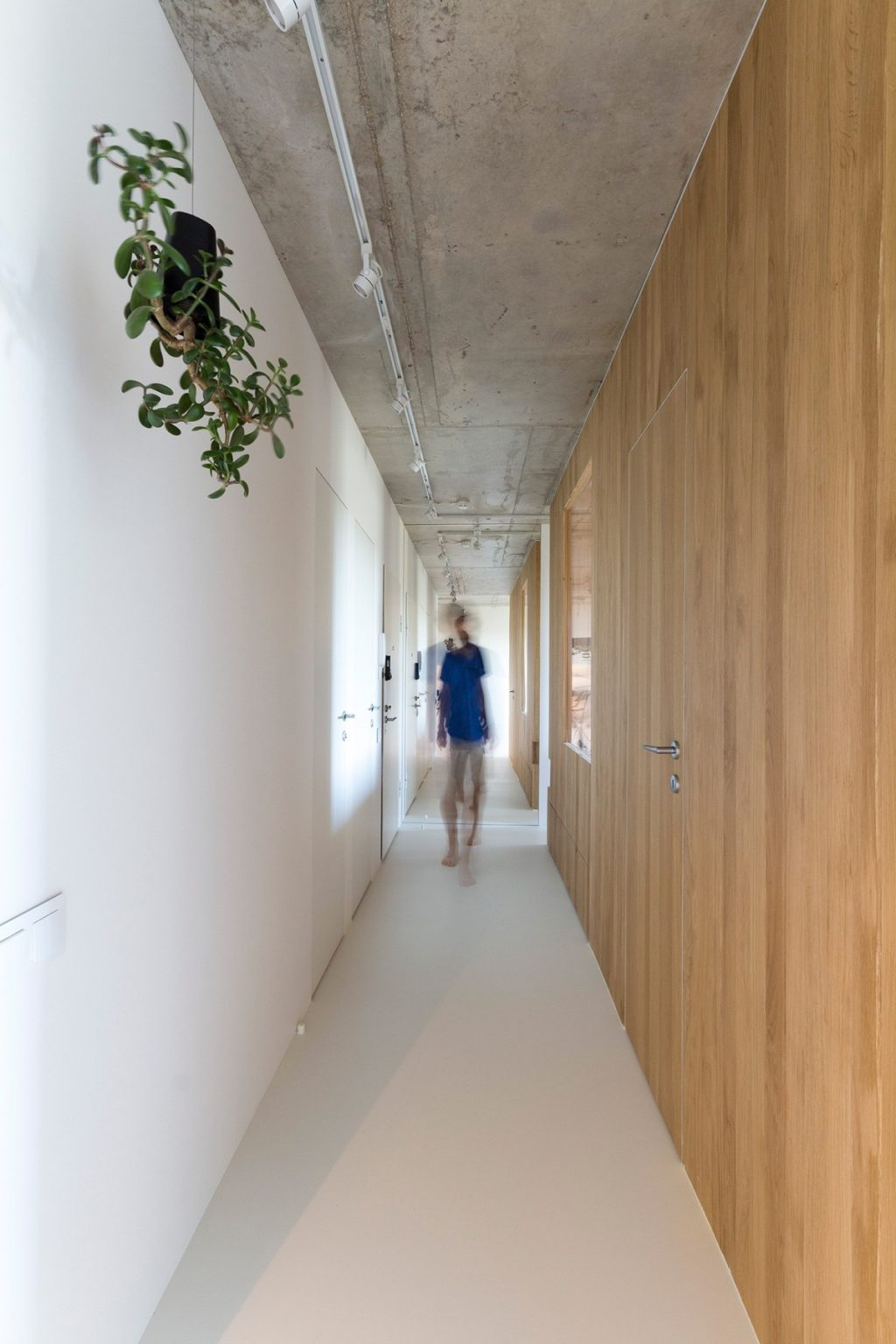 28.Minimal-hallway-houses-under-50sqm-living-hanging-plants-white-and-wood-walls