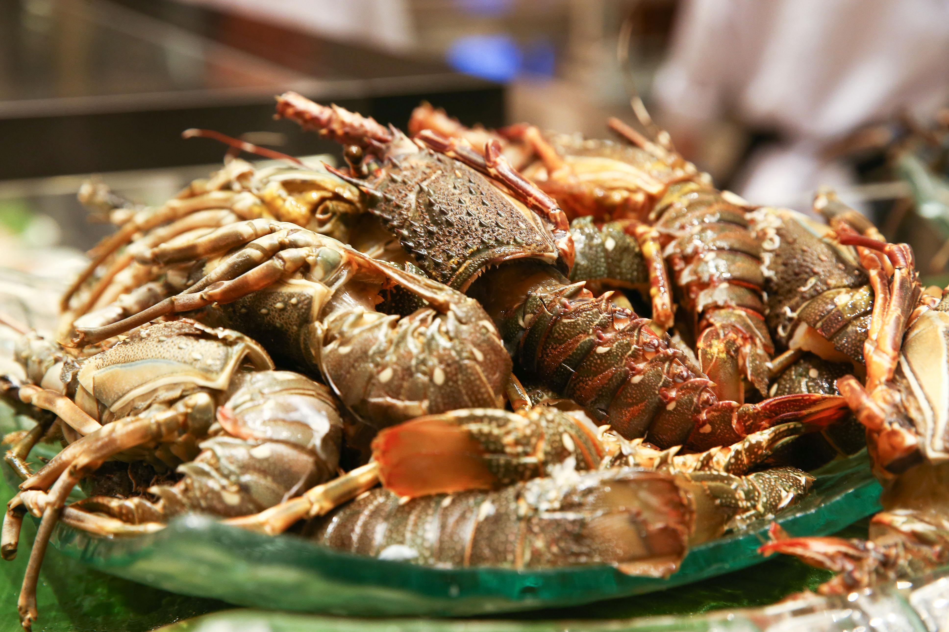 Sheraton Saigon - ẩm thực Tết sepecial menu - elle vietnam 2