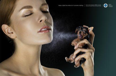 mỹ phẩm cruelty-free, lạm dụng động vật - elle