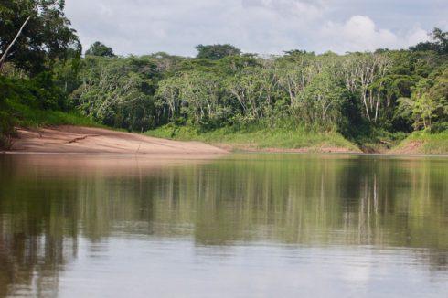 Du lịch Amazon Bàn tay che chở 1