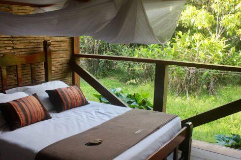 Du lịch Amazon Bàn tay che chở 2