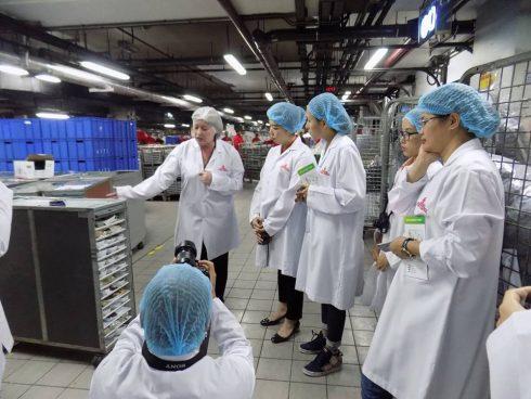 Tất cả nhân viên và khách khi vào khu vực nhà máy đều phải tuân thủ các quy tắc nghiêm ngặt: làm sạch tay, đội mũ, mặc áo bảo hộ để đảm bảo môi trường vô trùng cho khu vực catering.