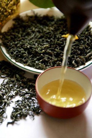 Bí quyết uống, pha và bảo quản trà cho cuộc sống cân bằng