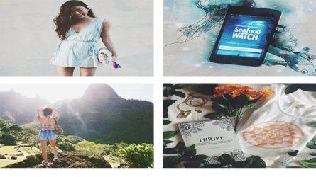 Tìm hiểu xu hướng sống xanh qua các tài khoản Instagram
