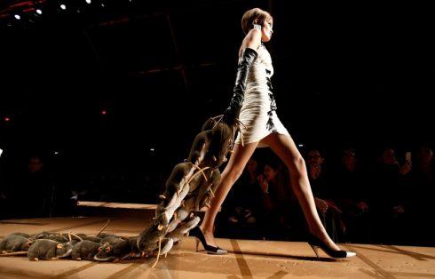 BST kêu gọi tái chế trong thời trang của Moschino