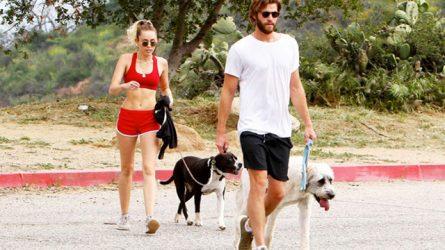 Miley Cyrus và Liam Hemsworth: chuyện hợp tan là định mệnh