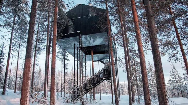 6 ngôi nhà trên cây khiến bạn chỉ muốn đến ngay mùa hè này