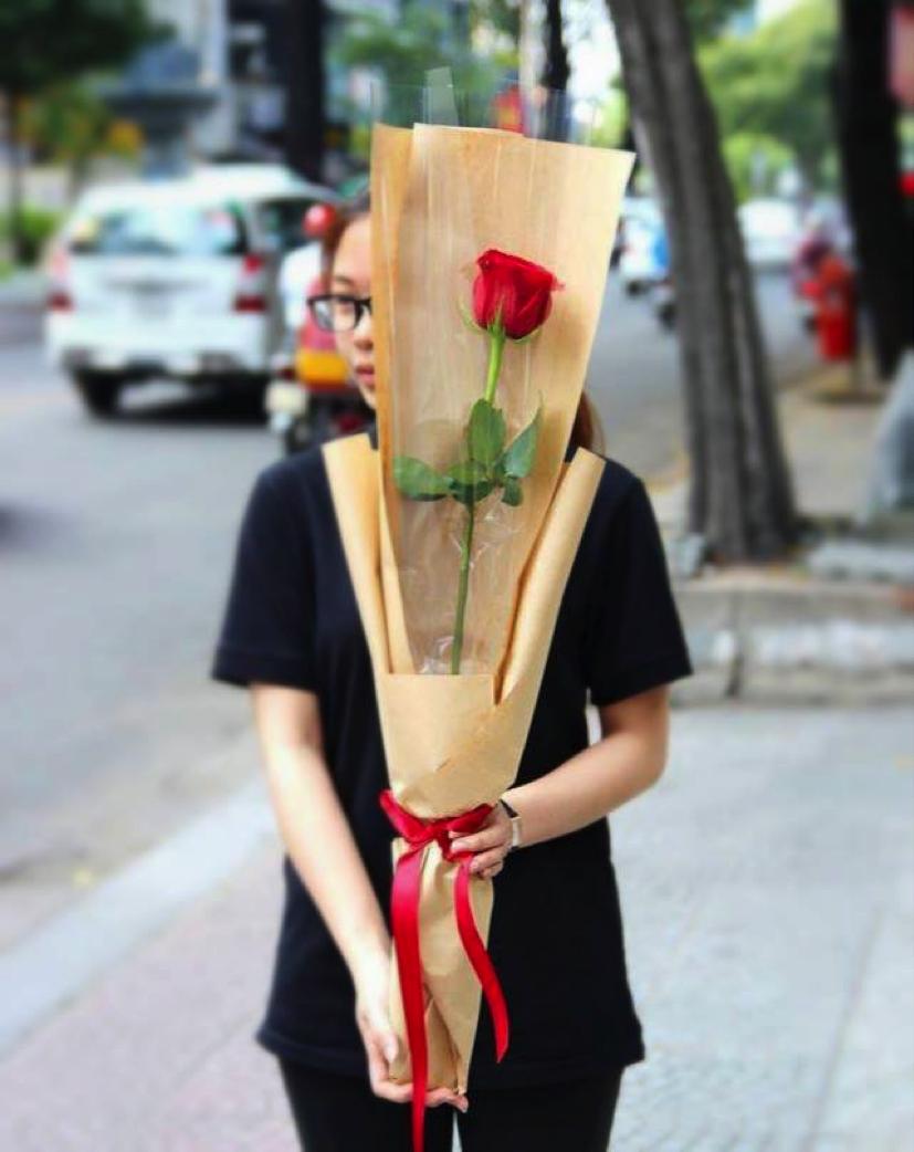 Hoa hồng ecuador