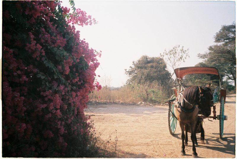 Du lich mot minh va hanh trinh duoi theo mat troi o Myanmar 6