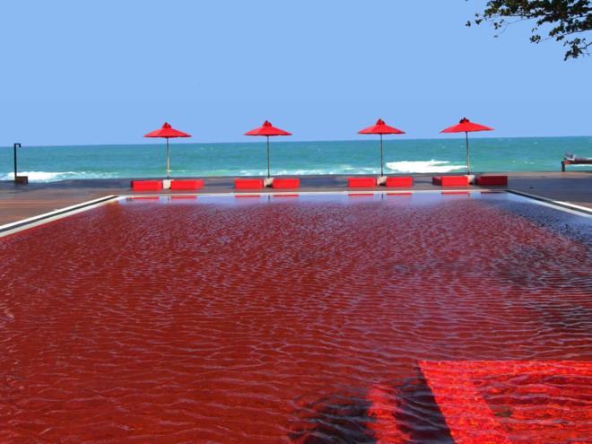 Hồ bơi tại khách sạn The Library, Koh Samui, Thái Lan