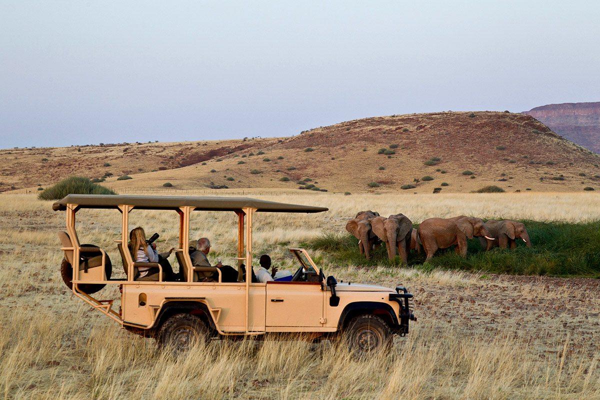 Khu bảo tồn động vật hoang dã Kulala rộng 90 ngàn mét vuông từ cồn cát Sossuvlei