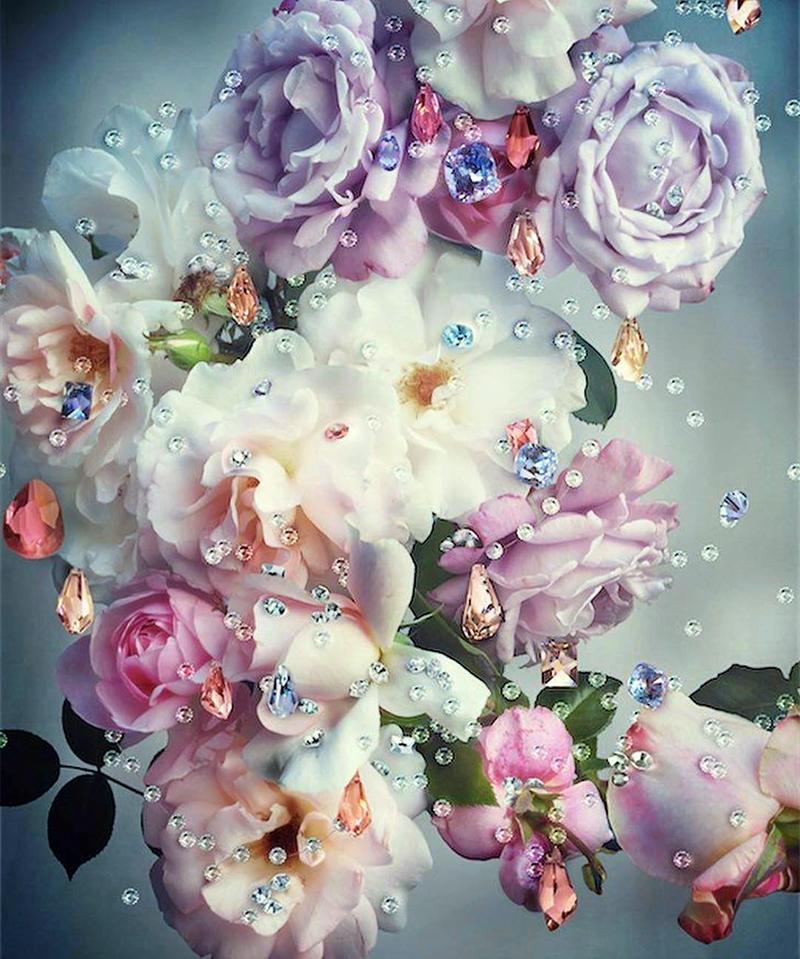 Những cánh hoa trong vườn nhà (Ảnh: Nick Knight)