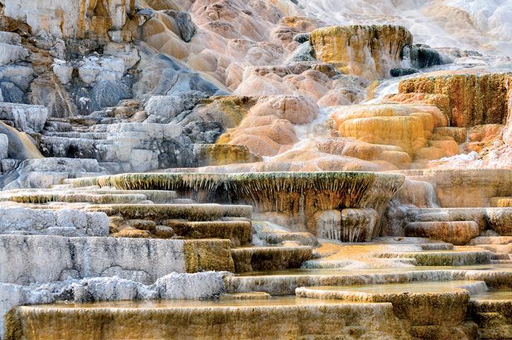 Ghé thăm rừng quốc gia đầu tiên trên thế giới - Yellowstone