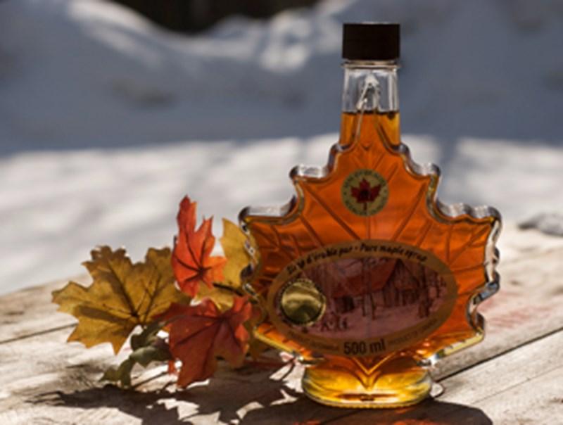 Si rô cây Phong, Canada